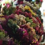 #ArtistaÑoño de la Semana: El multifacético Carlos Arias ? 17