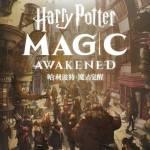 Videojuego de Harry Potter