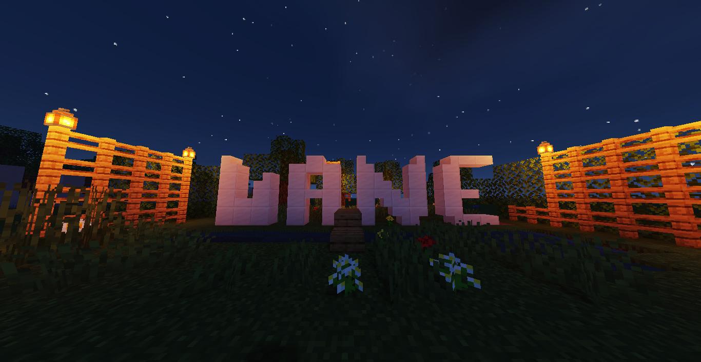 Minecraft Alumno UANE