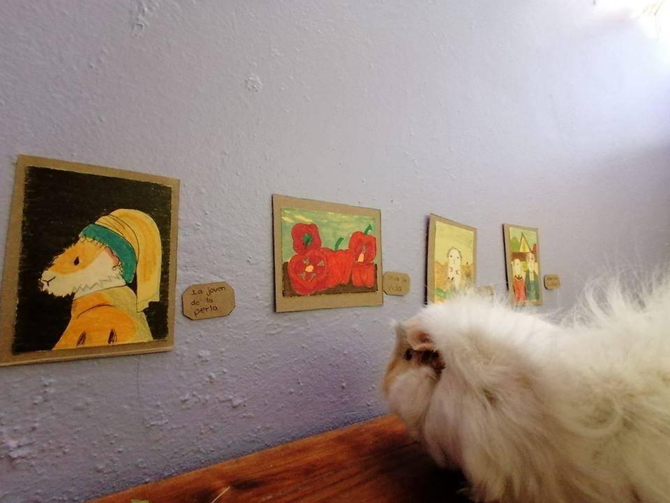 Exposición temporal Cui 20: una usuaria de Facebook recrea pinturas icónicas para sus cuyos 15