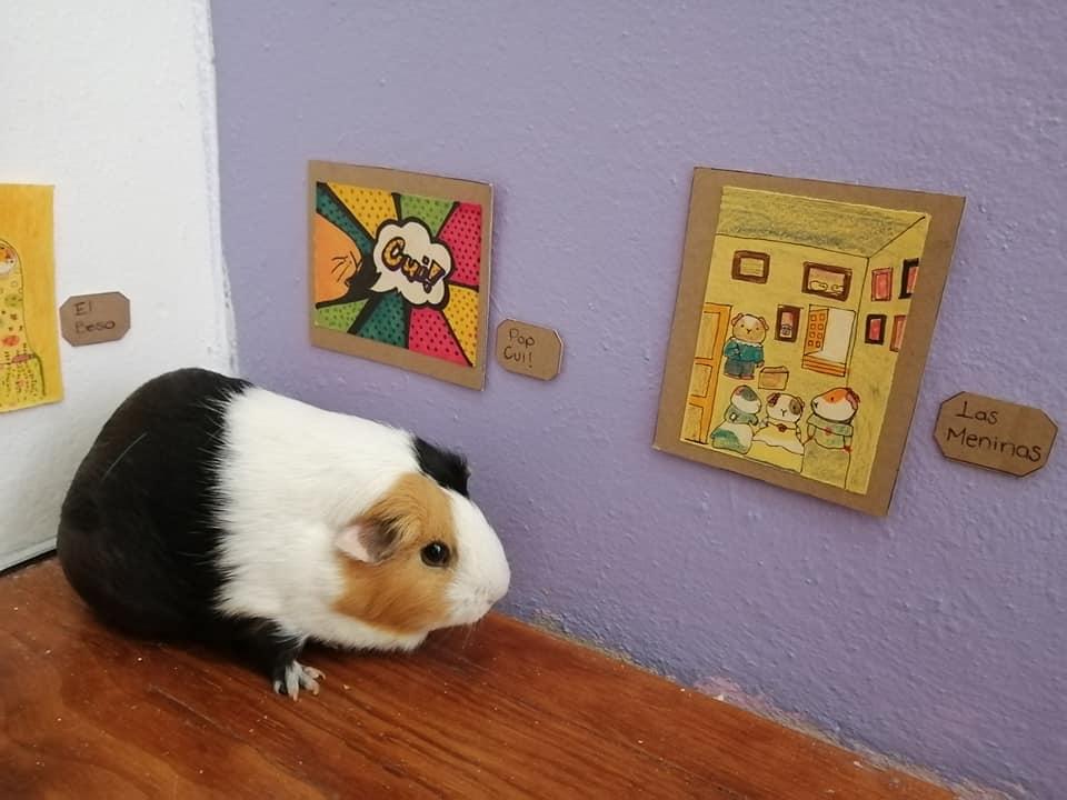 Exposición temporal Cui 20: una usuaria de Facebook recrea pinturas icónicas para sus cuyos 8