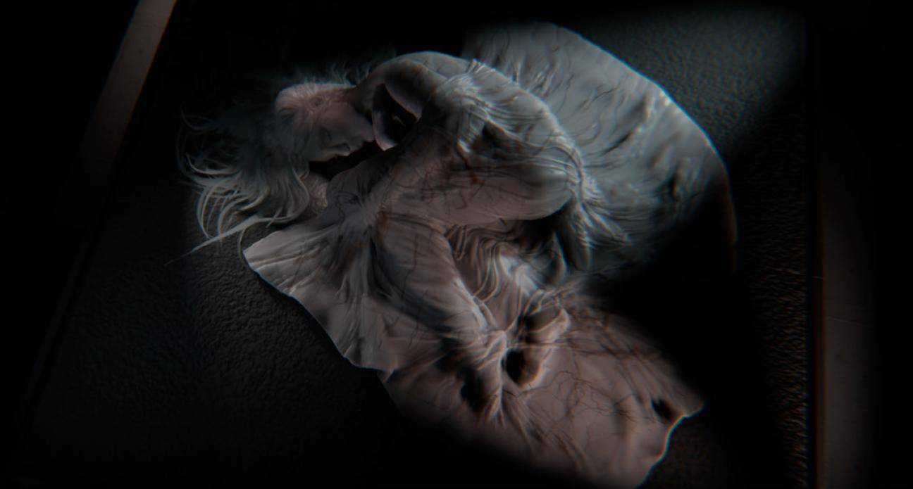 Noah Cyrus usó Dreams para crear el vídeo musical de 'July' 5