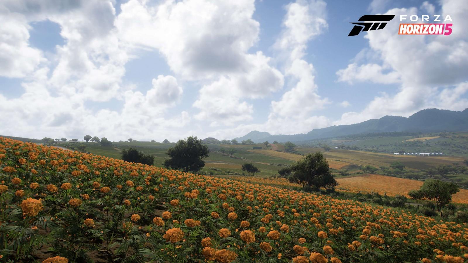 Forza Horizon 5: Conoce los 5 Biomas ubicados en México 3