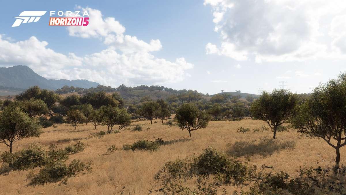 Forza Horizon 5: Conoce los 5 Biomas ubicados en México 4