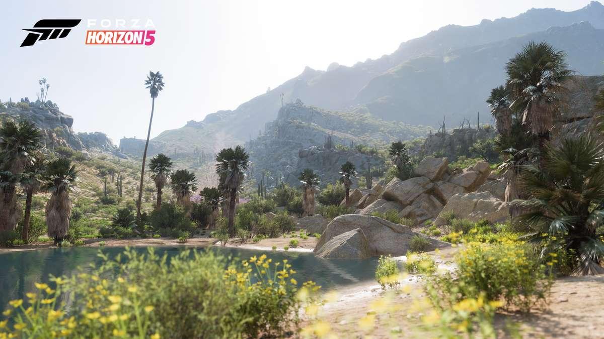 Forza Horizon 5: Conoce los 5 Biomas ubicados en México 6