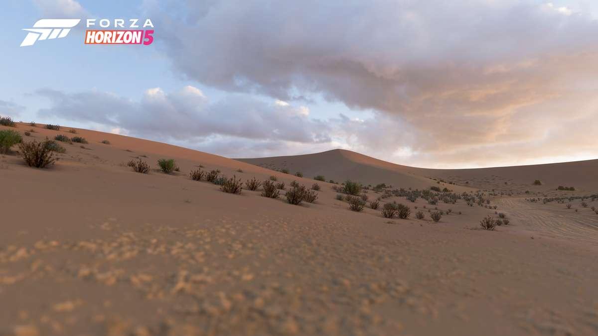 Forza Horizon 5: Conoce los 5 Biomas ubicados en México 8